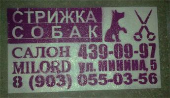 Реклама на асфальте в Нижнем Новгороде трафарет